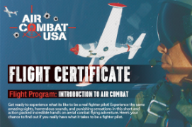 fighter experience flight